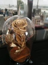 Gold Örök Rózsa