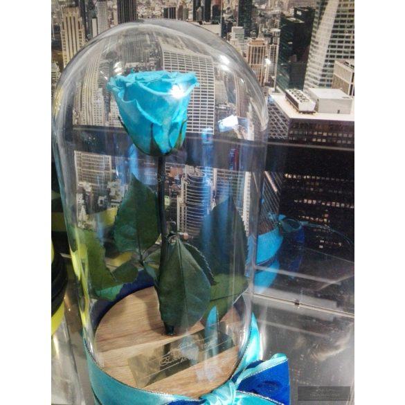 Light Blue Örök Rózsa