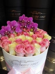 Exclusive Rózsa 48-50 szàlas Box Phalaenopsis Orchideàval