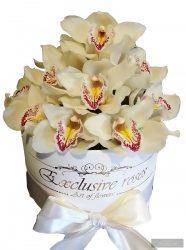 Orchidea Box