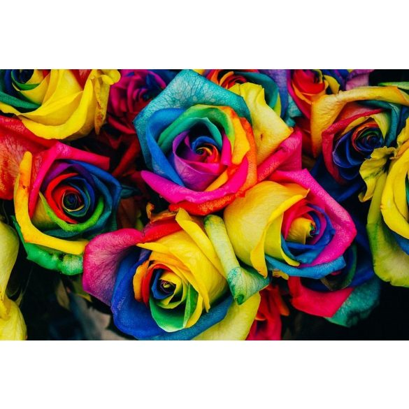 Szivárvány rózsa csokor 19 szálas kötésben