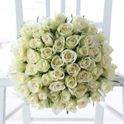 Fehér Rózsa csokor 50 szál Rózsából