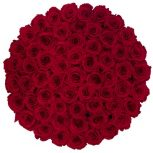 Exclusive Roses®Premium Box 100 szàl